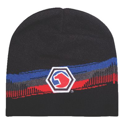 ROUGH STRIPES BEANIE | Matco Tools